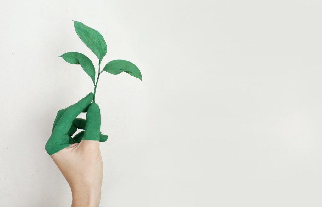 écologie digitale
